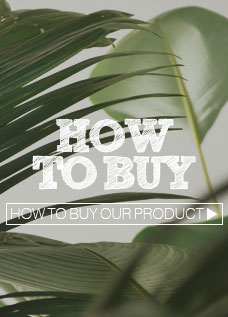 Simple steps to shop online with us